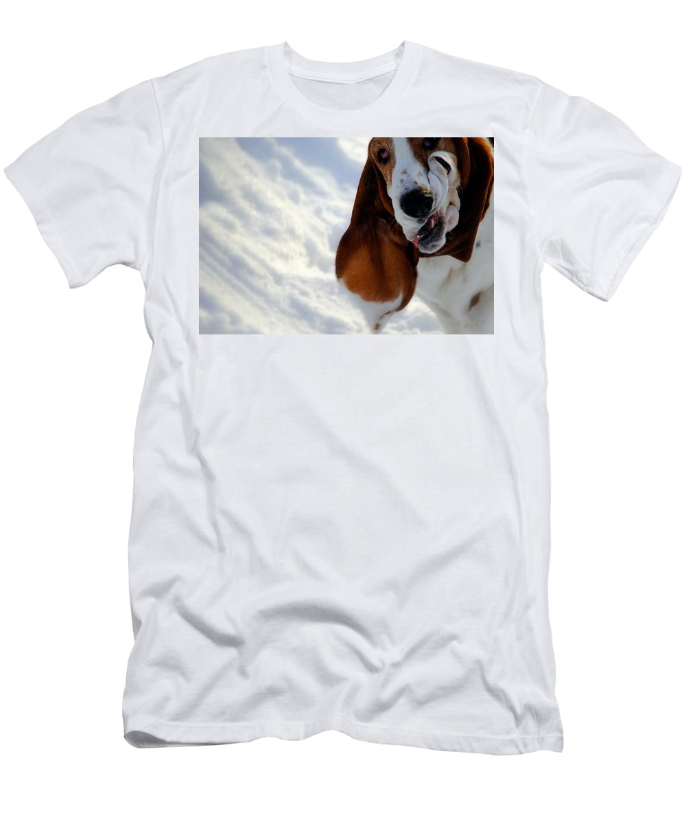 Funny Color Photo Men's T-Shirt (Athletic Fit) featuring the photograph Silly Basset Hound by Marysue Ryan