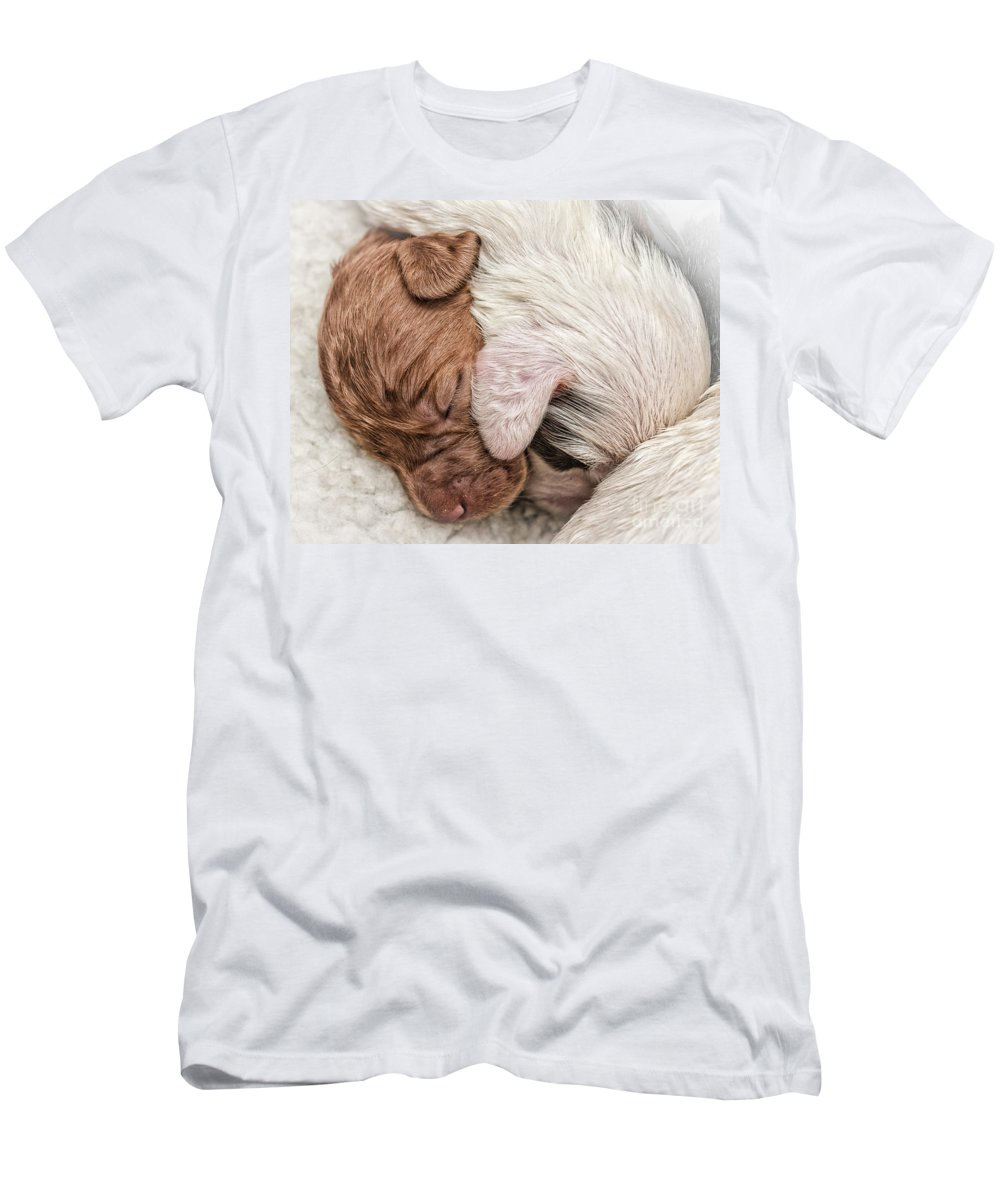 Dog Men's T-Shirt (Athletic Fit) featuring the photograph Sleeping Puppies by Julian Eales