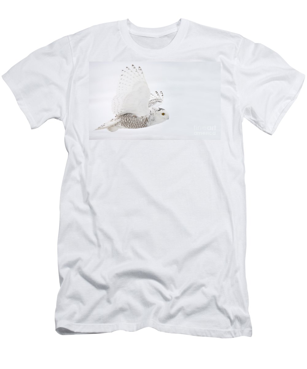 Snowy Owl Men's T-Shirt (Athletic Fit) featuring the photograph Snowy Owl Pictures 77 by World Wildlife Photography