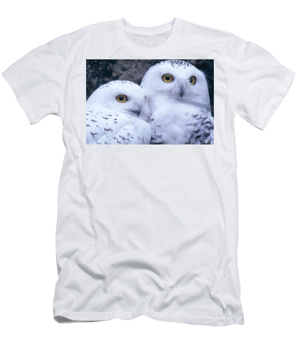 Snowy Owls Men's T-Shirt (Athletic Fit) featuring the photograph Snowy Owls by Paal Hermansen