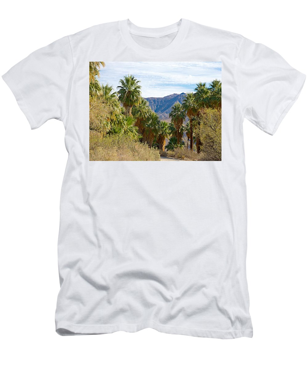 South Side View Of Andreas Canyon In Indian Canyons Men's T-Shirt (Athletic Fit) featuring the photograph South Side View Of Andreas Canyon Trail In Indian Canyons-ca by Ruth Hager