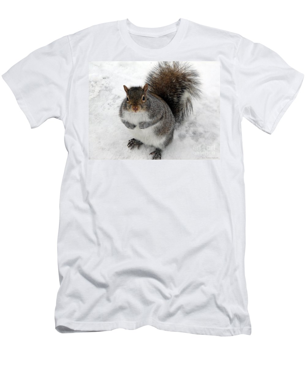 Squirrel Men's T-Shirt (Athletic Fit) featuring the photograph Squirrel Saying Feed Me Please At Niagara Falls by Rose Santuci-Sofranko