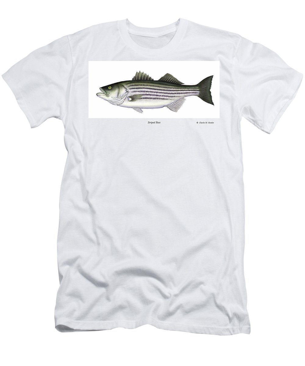 Striped Bass Art Men's T-Shirt (Athletic Fit) featuring the painting Striped Bass by Charles Harden