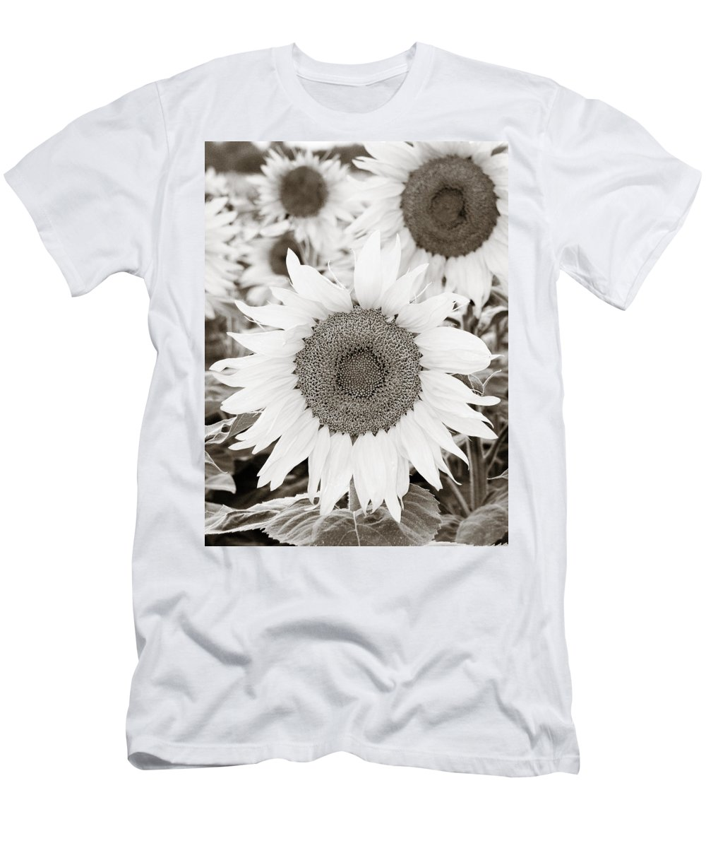 Sunflower Men's T-Shirt (Athletic Fit) featuring the photograph Sunflowers In Back And White by Marilyn Hunt