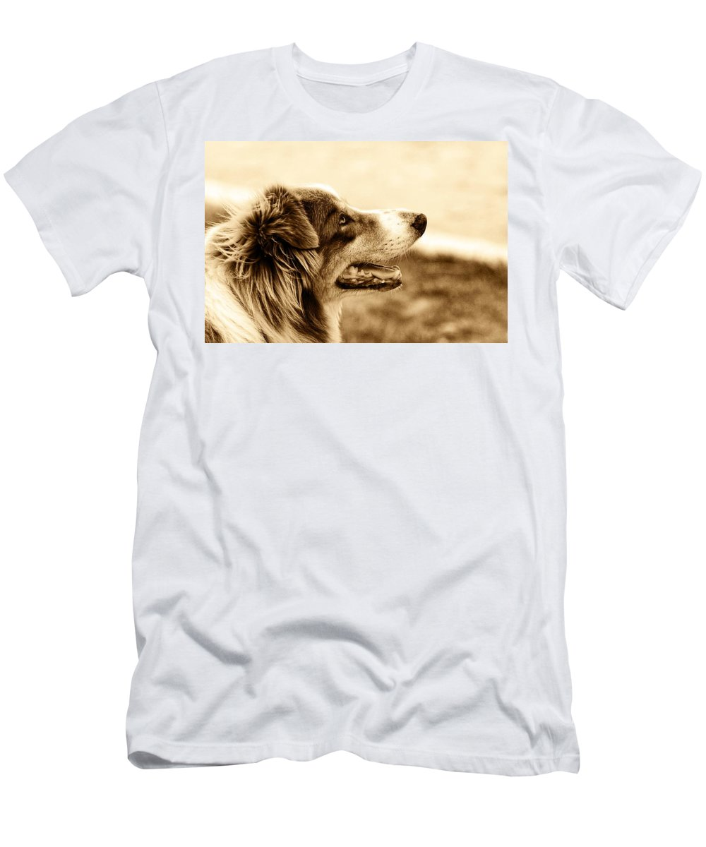 Dog Men's T-Shirt (Athletic Fit) featuring the photograph Sweet Doggie by Alice Gipson