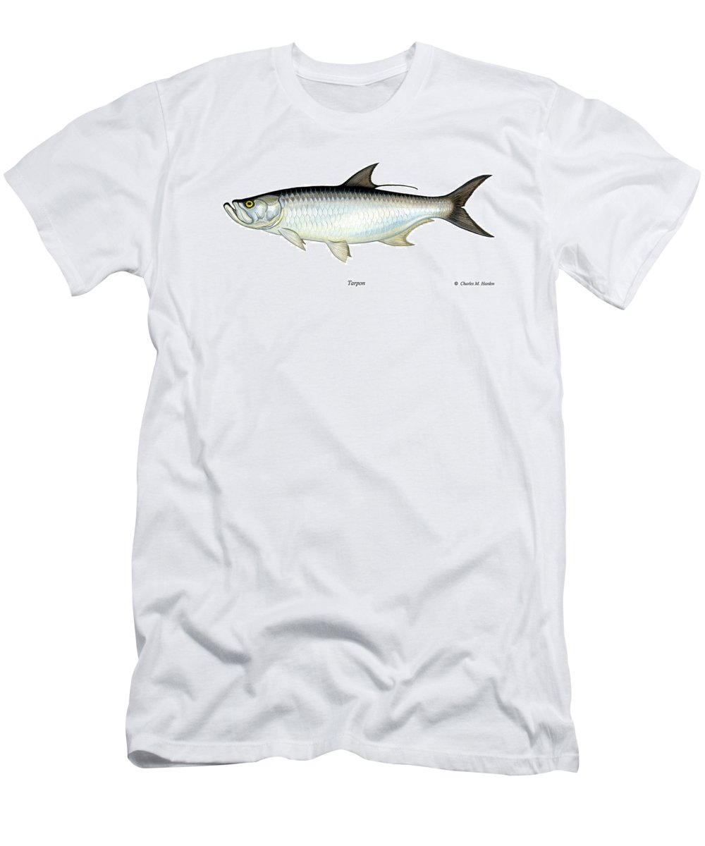 Charles Men's T-Shirt (Athletic Fit) featuring the painting Tarpon by Charles Harden
