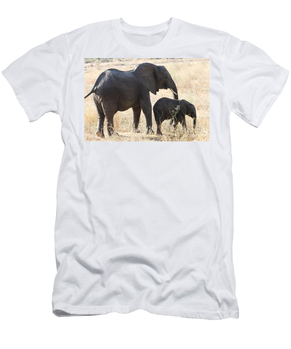 Elephant Men's T-Shirt (Athletic Fit) featuring the photograph The Training Program by Christina Gupfinger