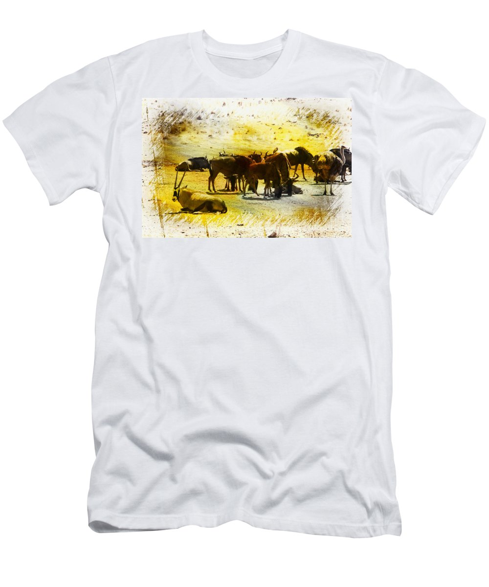 Gemsbok Men's T-Shirt (Athletic Fit) featuring the photograph The Waterhole by Douglas Barnard