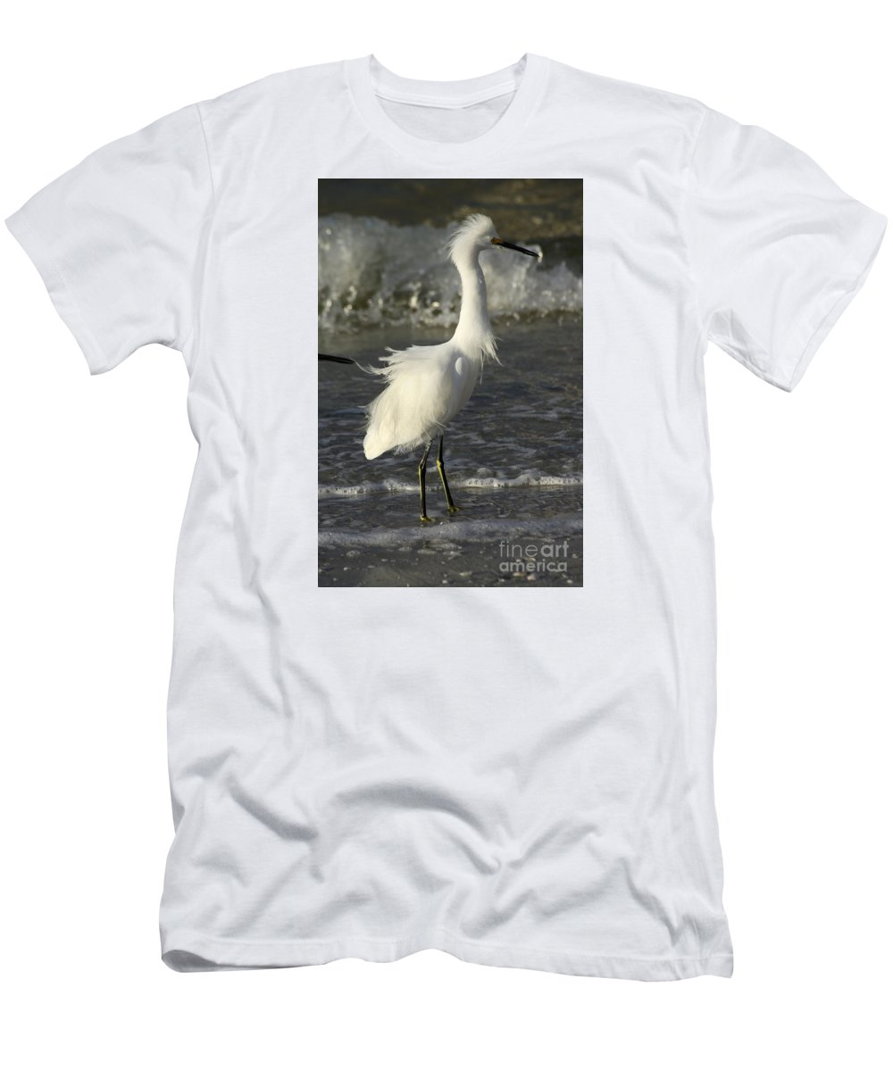 Snowy Egret Men's T-Shirt (Athletic Fit) featuring the photograph Tousled Egret by Christiane Schulze Art And Photography