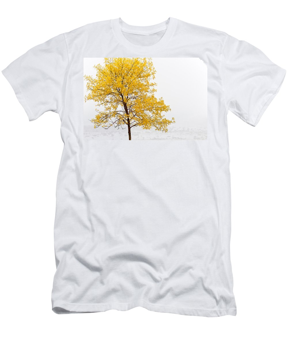 Autumn Men's T-Shirt (Athletic Fit) featuring the photograph Tree by U Schade