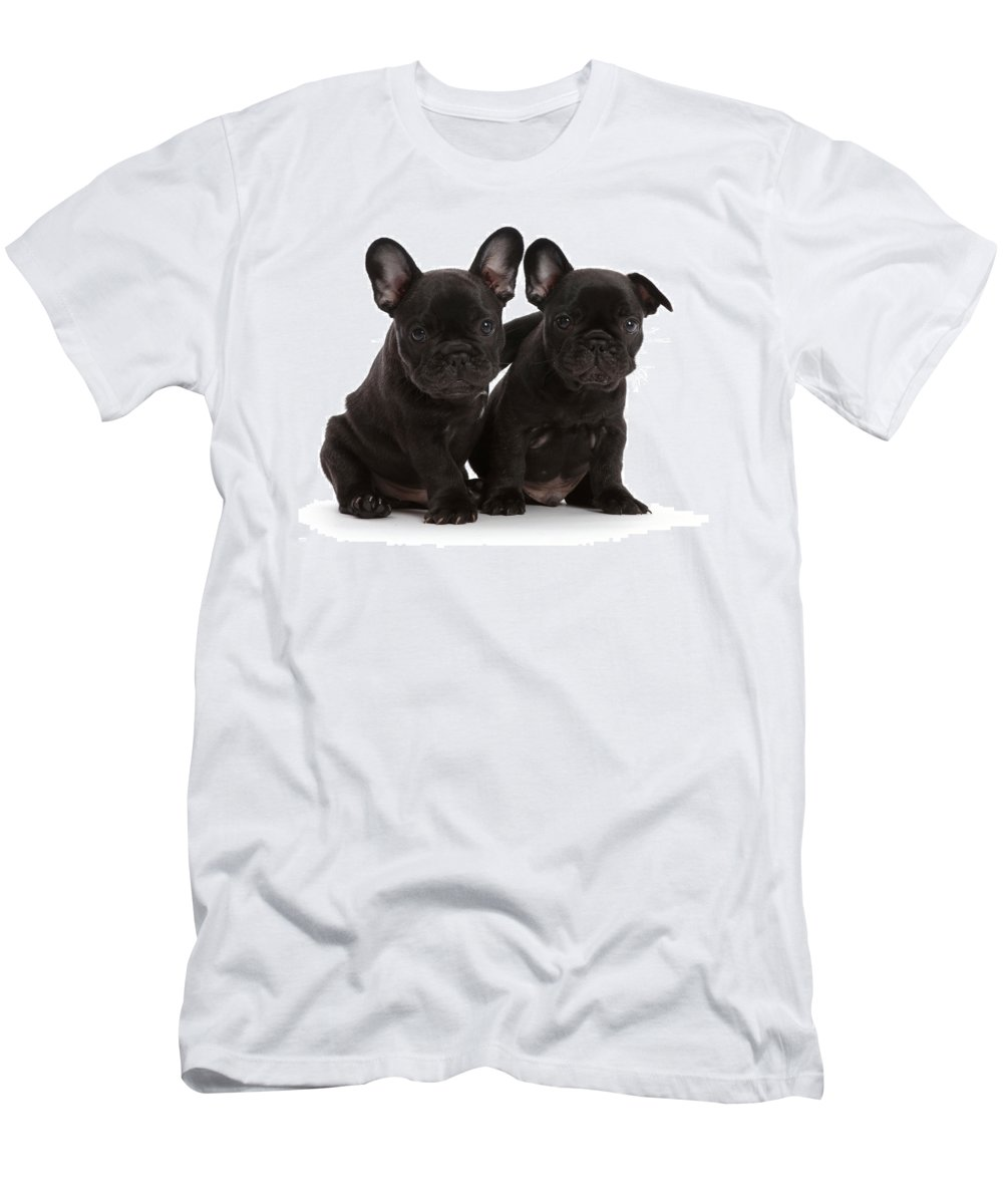 Animals Men's T-Shirt (Athletic Fit) featuring the photograph Two French Bulldog Puppies, 6 Weeks by Mark Taylor