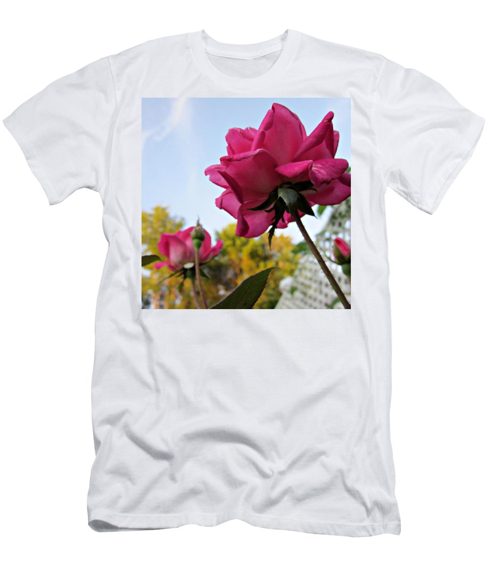 Pink Double Knockout Roses Men's T-Shirt (Athletic Fit) featuring the photograph Upward Roses by MTBobbins Photography