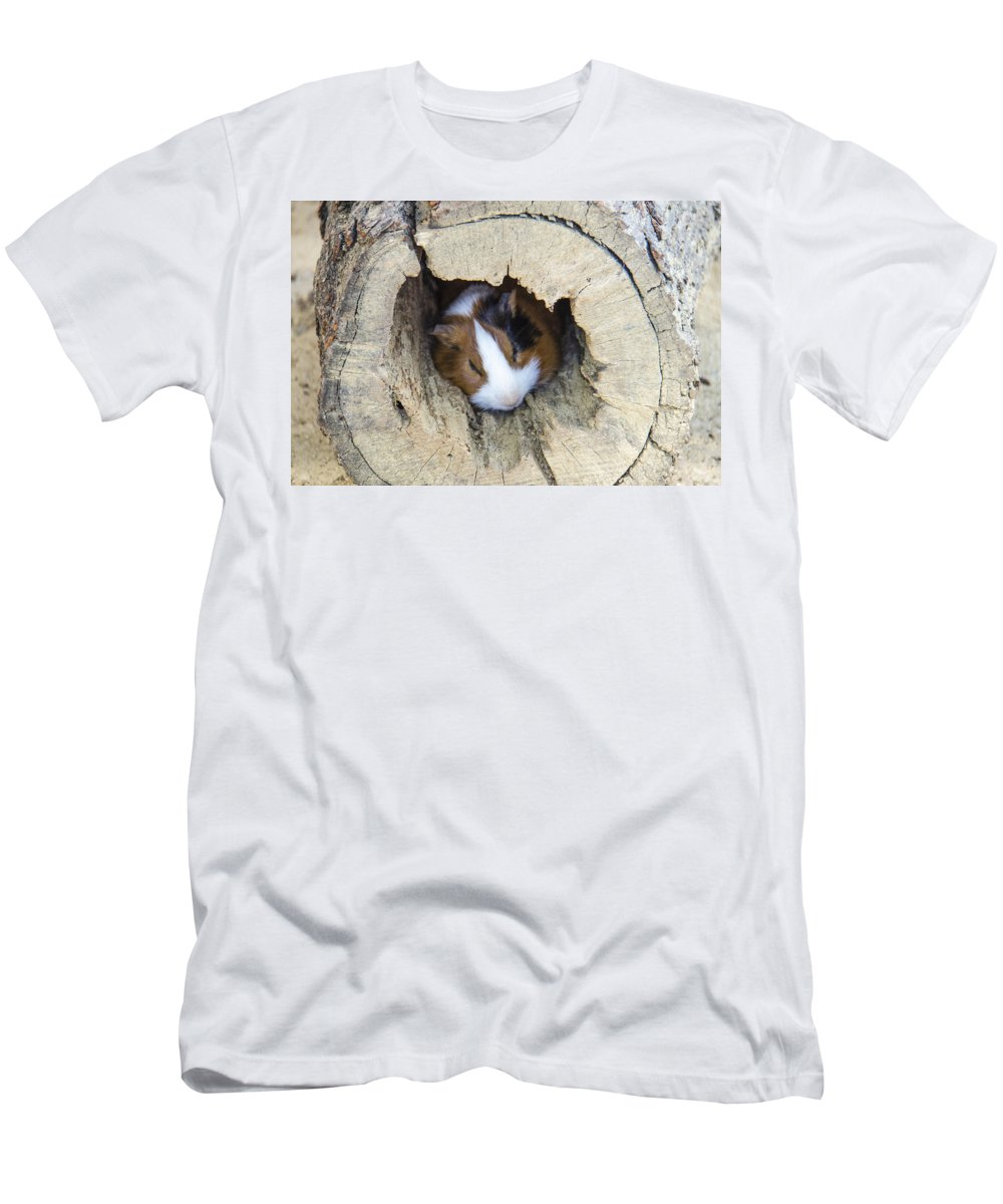 Animal Men's T-Shirt (Athletic Fit) featuring the photograph Vicious Animal Sleeping by Sotiris Filippou