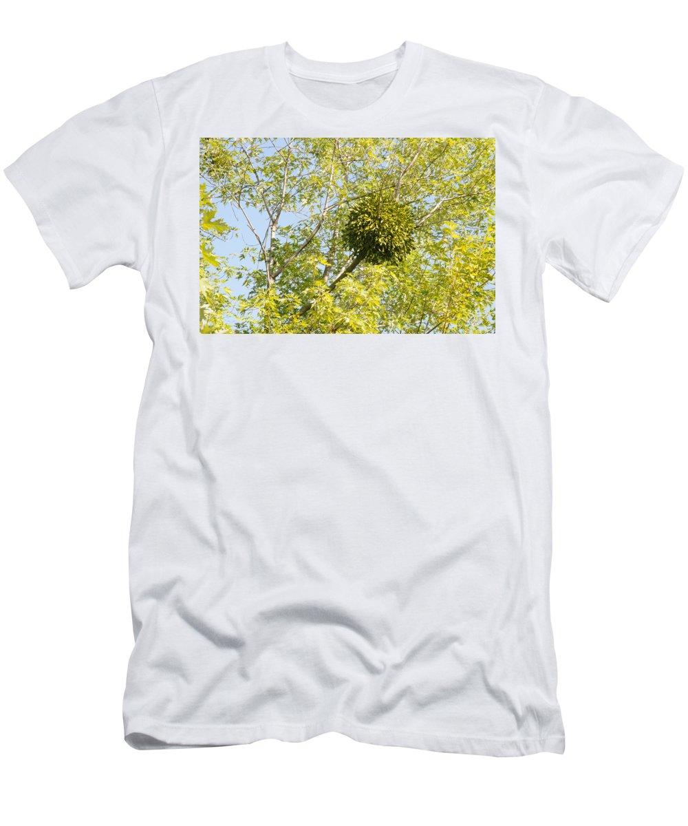 Album Men's T-Shirt (Athletic Fit) featuring the photograph Viscum by Alain De Maximy