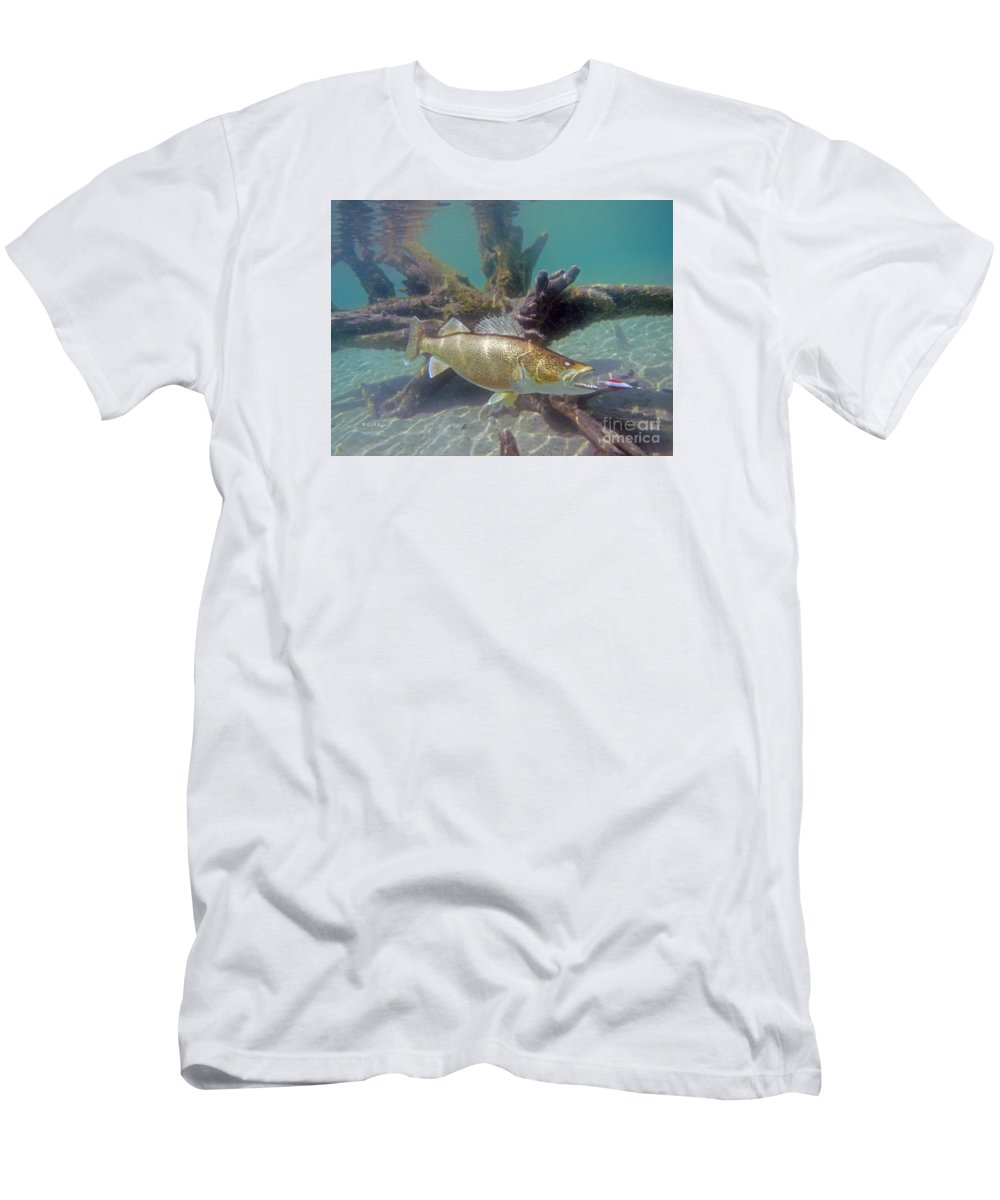 Walleye Pike And Dardevle T Shirt For Sale By Paul Buggia