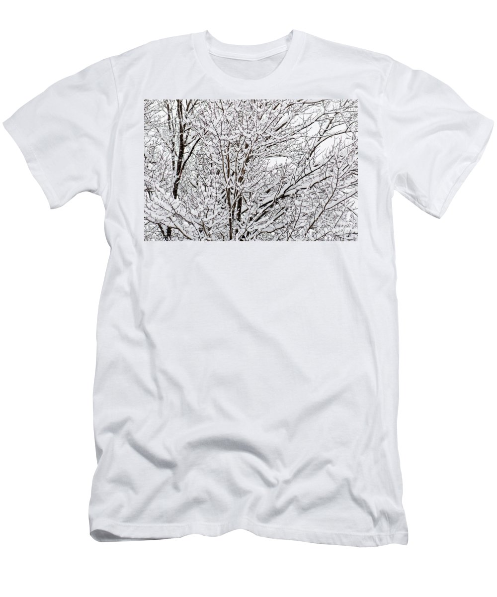 Winter Snow Covered Branches Men's T-Shirt (Athletic Fit) featuring the photograph Winter Branches by Gwen Gibson