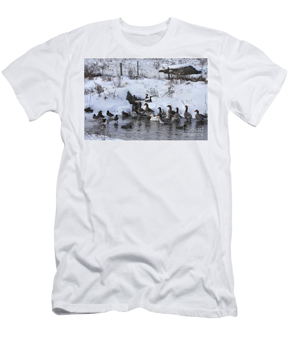 Winter Men's T-Shirt (Athletic Fit) featuring the photograph Winter Swimming Hole by Deborah Benoit
