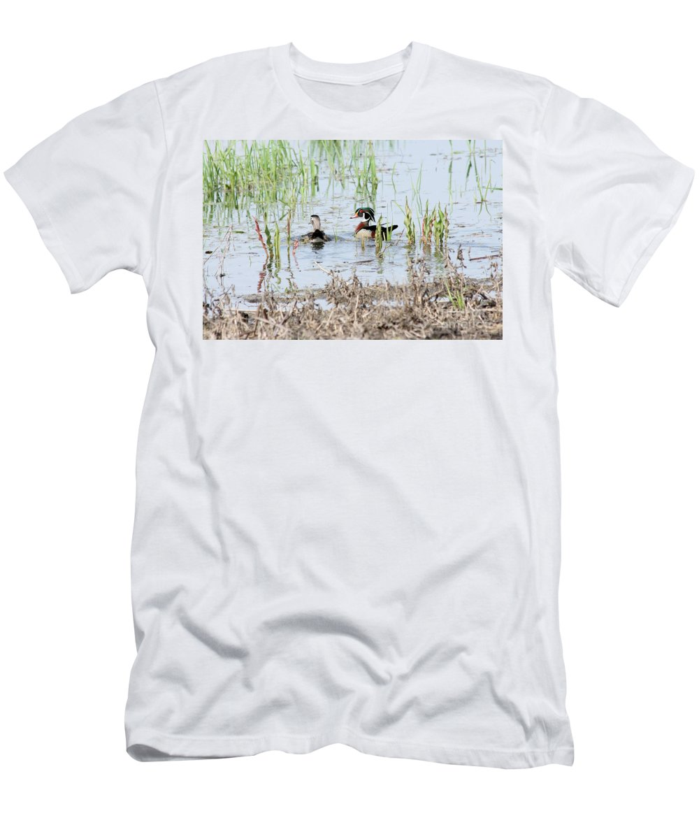 Wood Duck Men's T-Shirt (Athletic Fit) featuring the photograph Wood Ducks by Lori Tordsen
