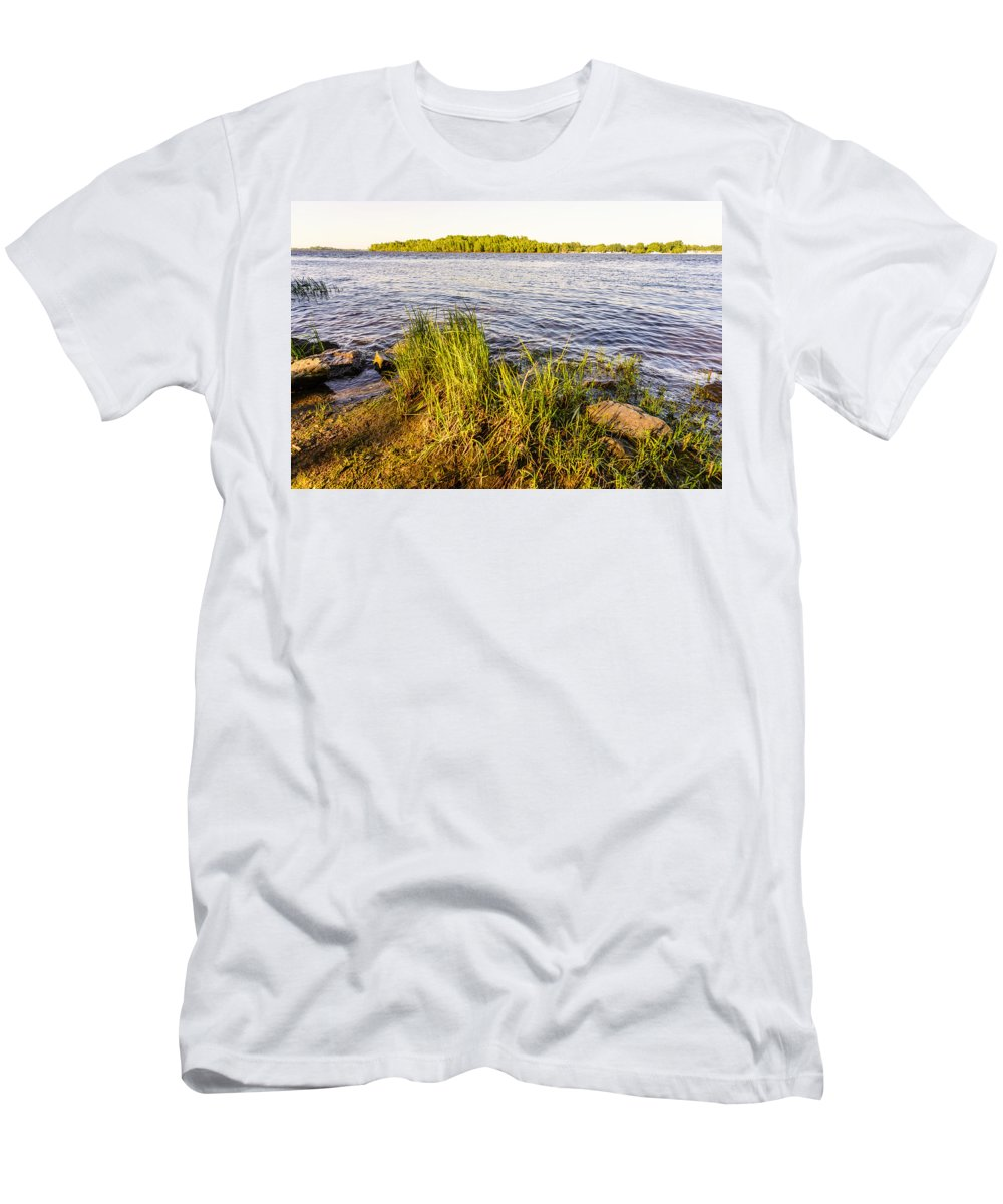 Background Men's T-Shirt (Athletic Fit) featuring the photograph Young Reeds by Alain De Maximy
