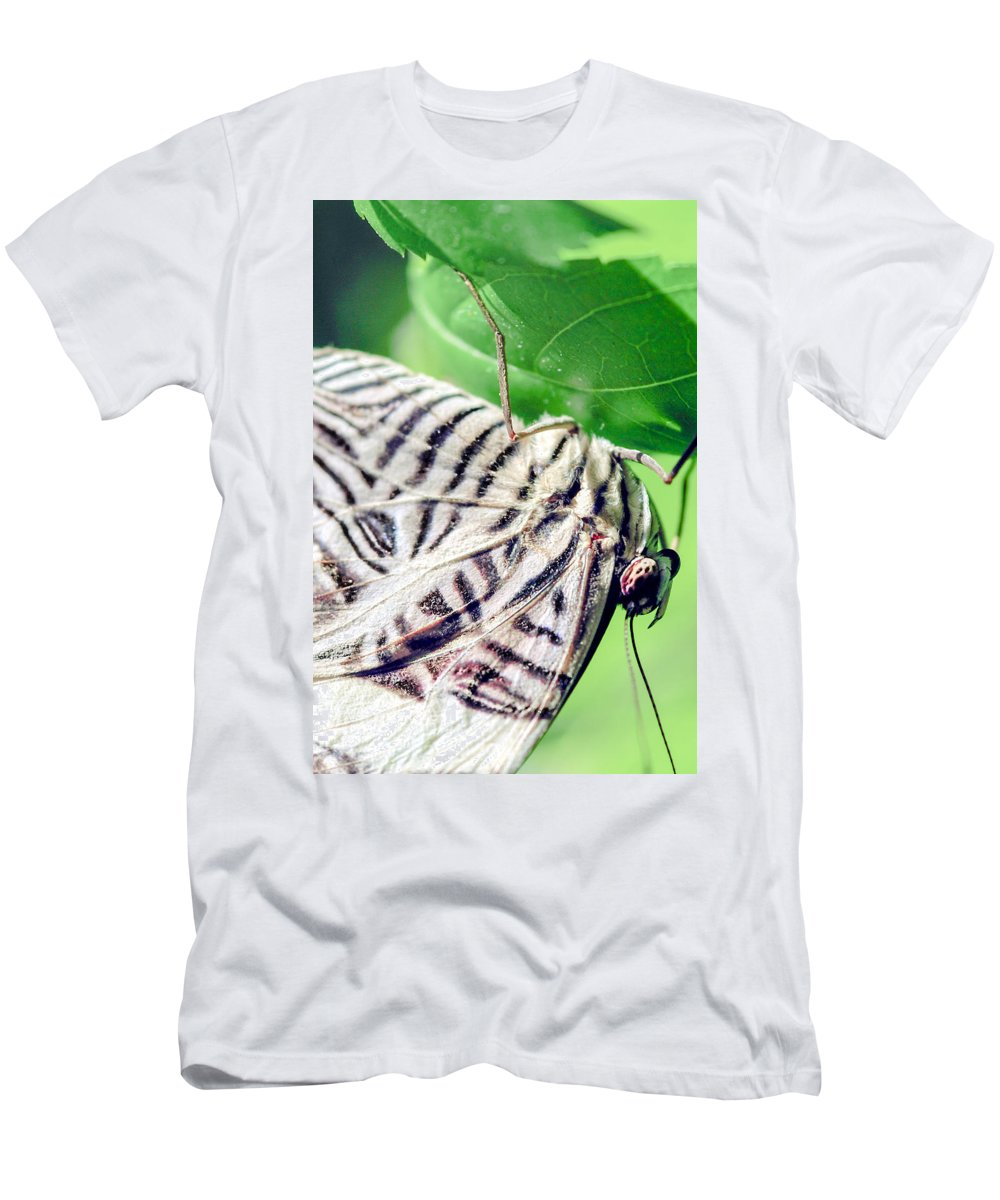 Optical Playground By Mp Ray Men's T-Shirt (Athletic Fit) featuring the photograph Zebra Long-wing Close-up by Optical Playground By MP Ray