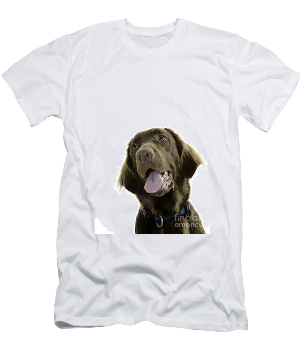Pet Men's T-Shirt (Athletic Fit) featuring the photograph Lilly by Angel Ciesniarska