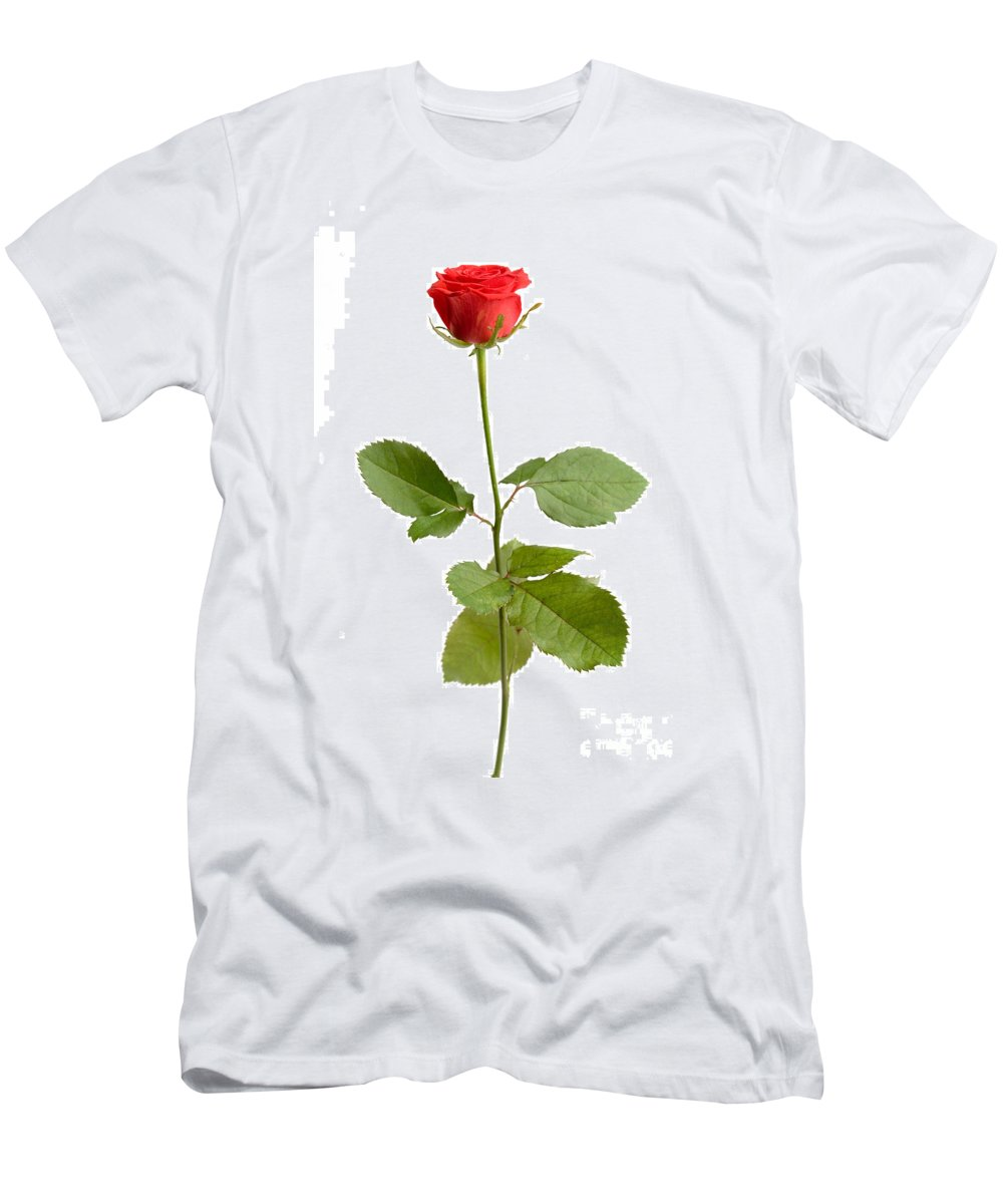 Kamo Men's T-Shirt (Athletic Fit) featuring the photograph Red Rose by Kati Finell