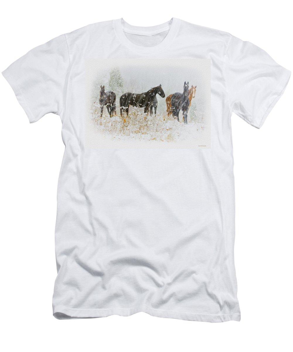 Ron Jones Men's T-Shirt (Athletic Fit) featuring the photograph Winter Horses by Ron Jones