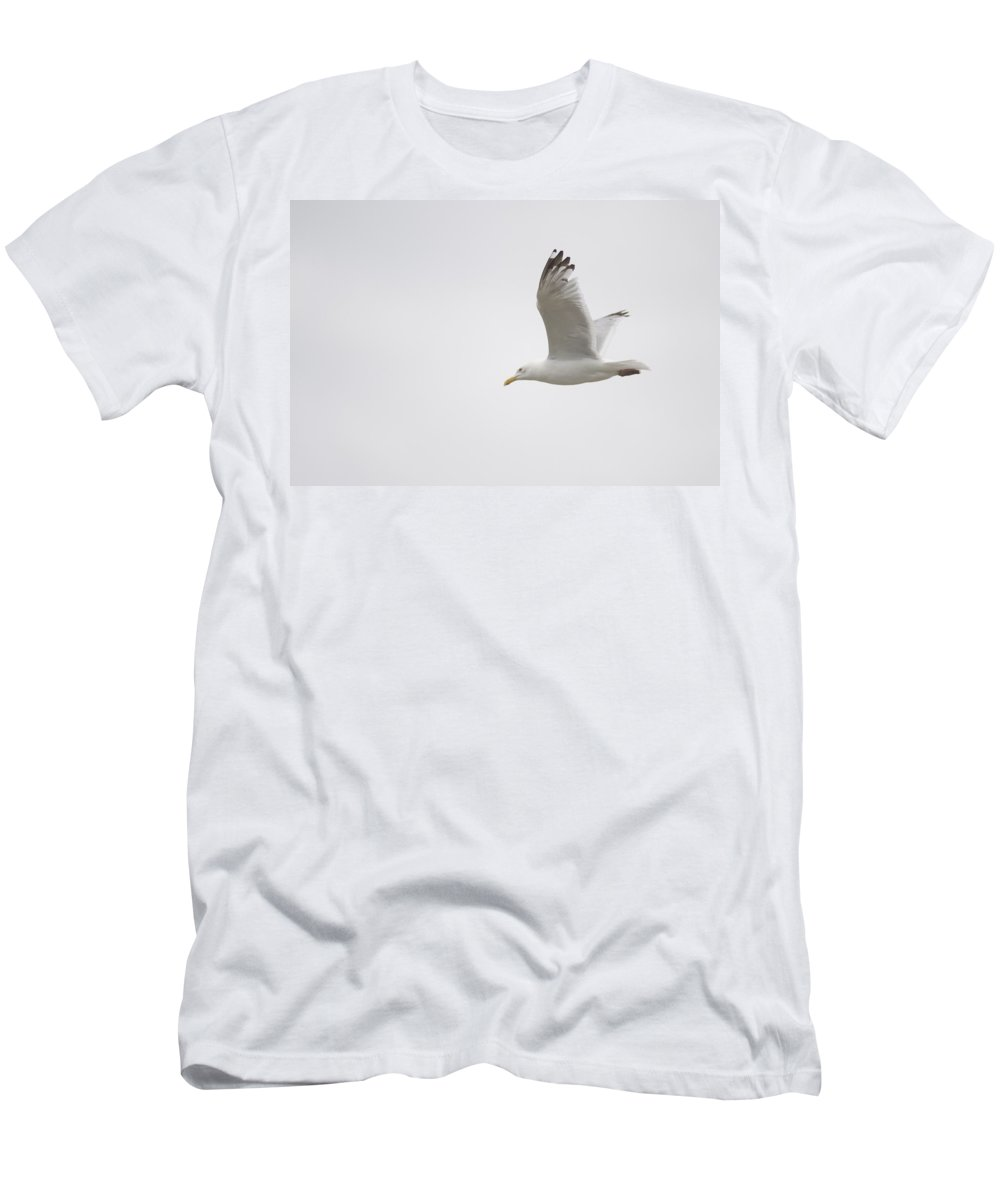 Bird Men's T-Shirt (Athletic Fit) featuring the photograph Lake Of The Woods, Ontario, Canada by Keith Levit