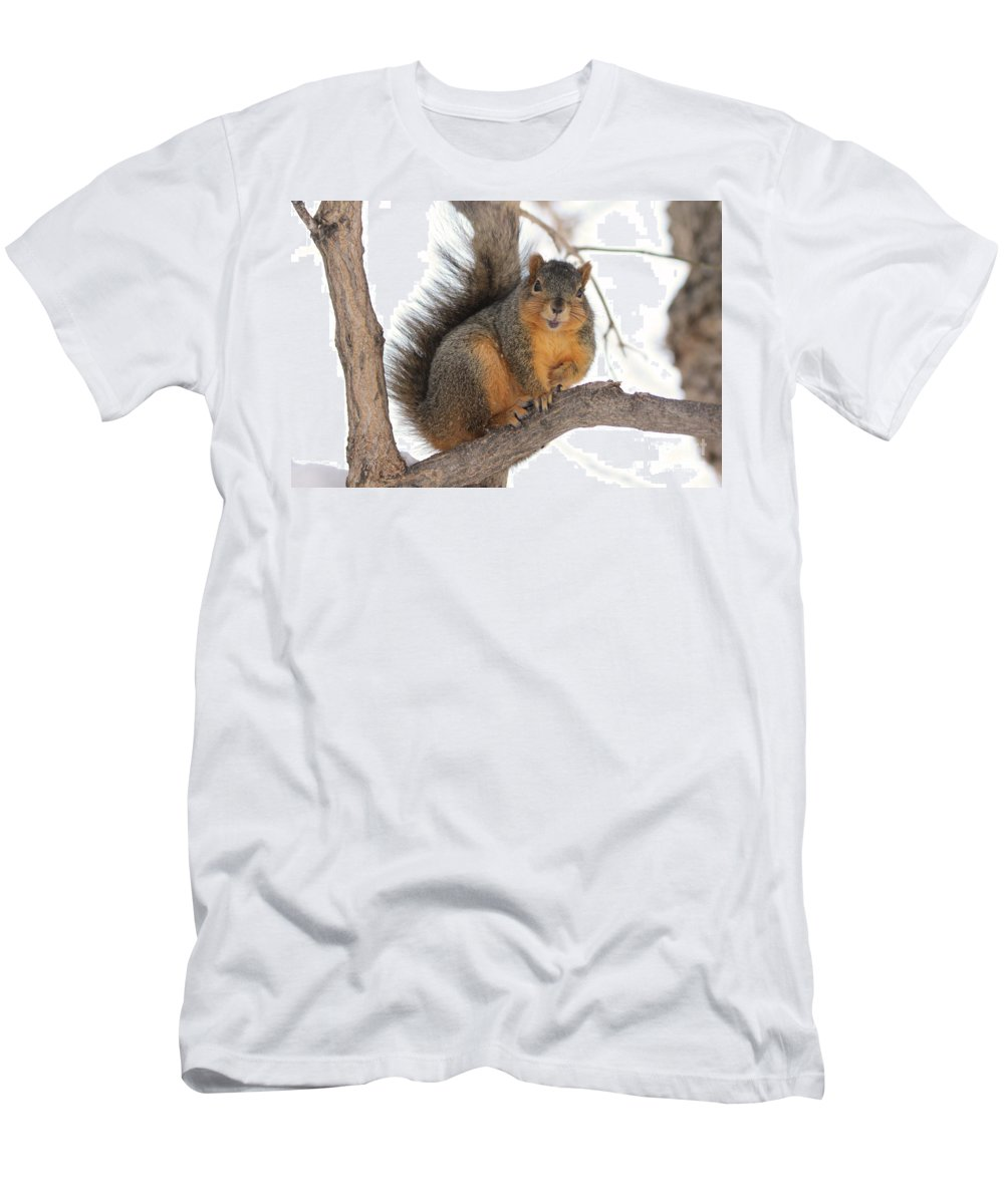 Squirrel Men's T-Shirt (Athletic Fit) featuring the photograph Squirrel by Lori Tordsen