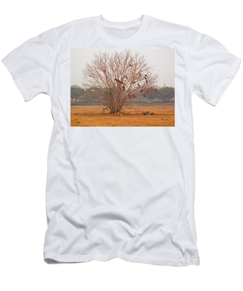 Kites Men's T-Shirt (Athletic Fit) featuring the photograph A Leafless Tree That Is Home To A Large Number Of Big Birds In The Middle Of A Ground by Ashish Agarwal