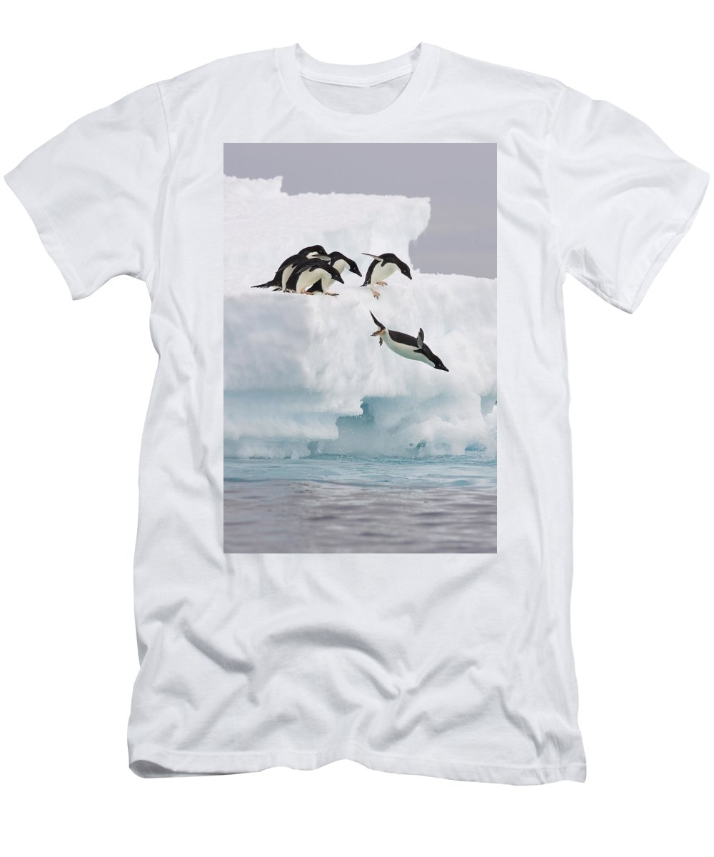 00761831 T-Shirt featuring the photograph Adelie Penguin Diving Antarctica by Suzi Eszterhas