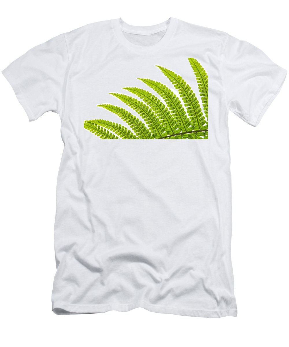Abstract Men's T-Shirt (Athletic Fit) featuring the photograph Backlit Fern by MakenaStockMedia - Printscapes