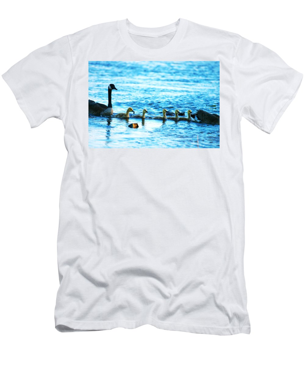 Canada Men's T-Shirt (Athletic Fit) featuring the photograph Canada Geese Family II by Paul Ge