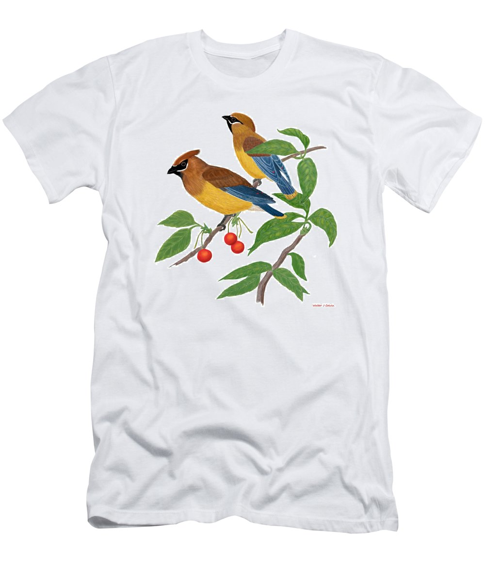 Cedar Waxwing Men's T-Shirt (Athletic Fit) featuring the digital art Cedar Waxwing by Walter Colvin