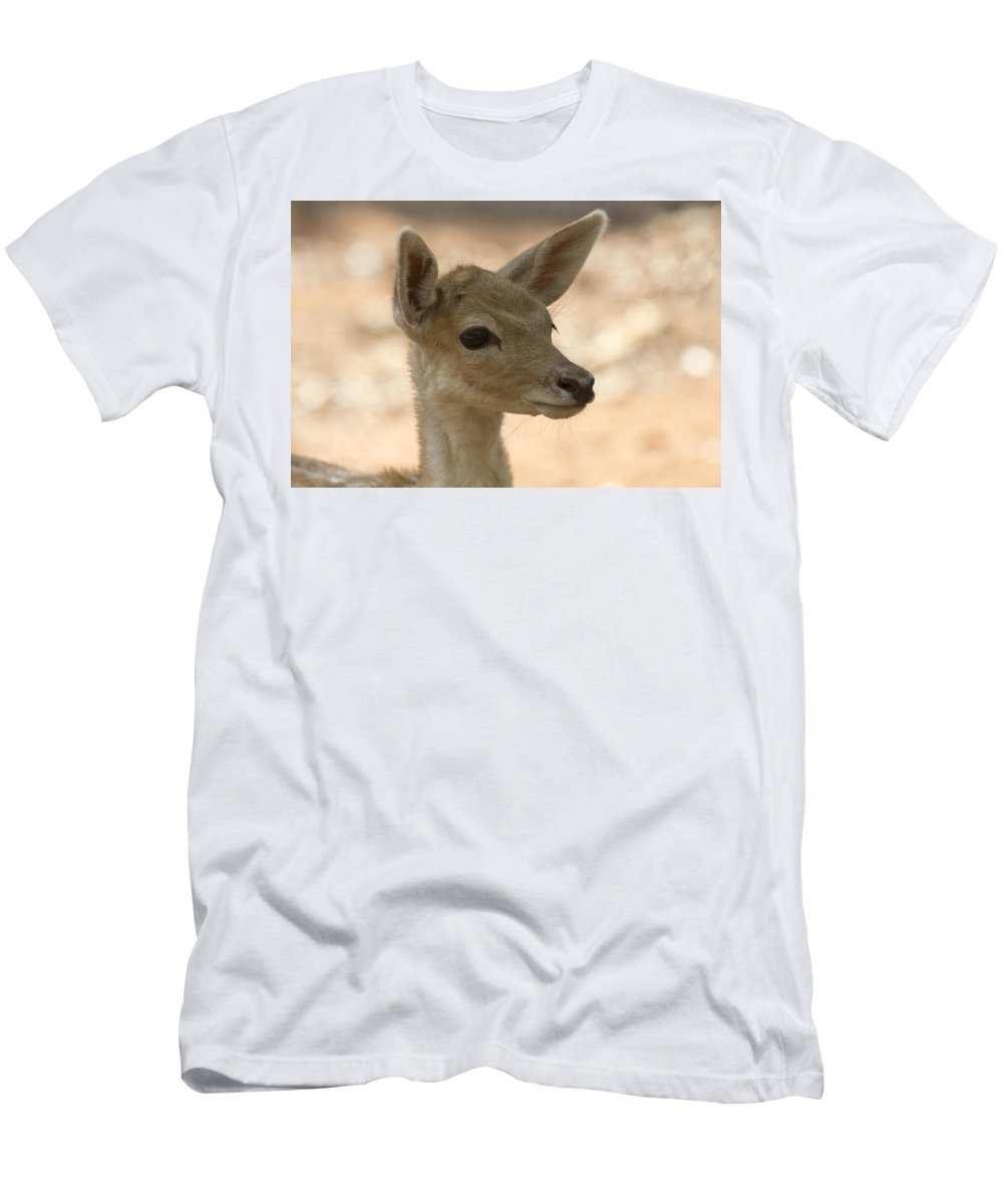 Juvenile Deer Men's T-Shirt (Athletic Fit) featuring the photograph Close-up by Douglas Barnard