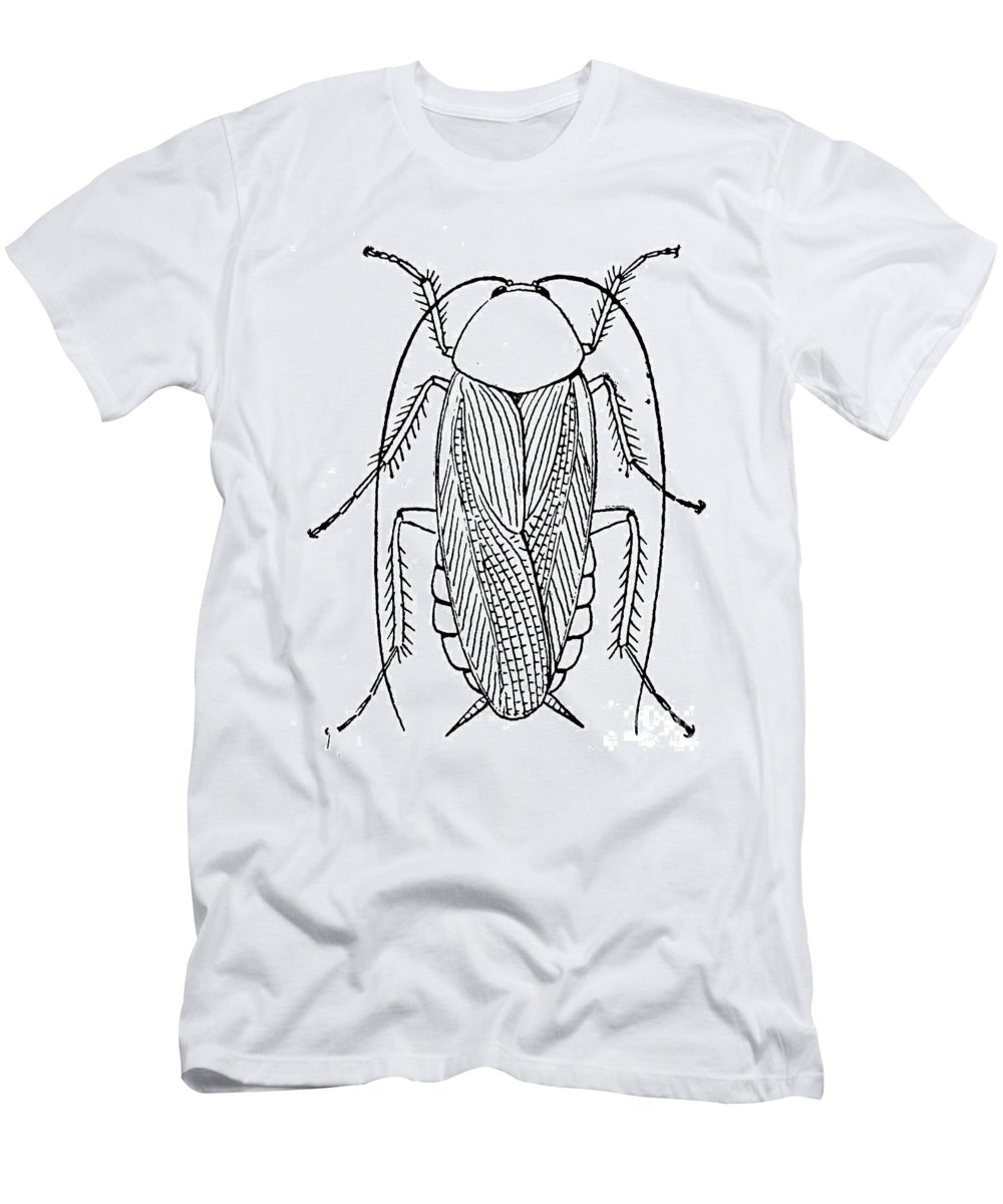 Animal Men's T-Shirt (Athletic Fit) featuring the photograph Cockroach by Granger