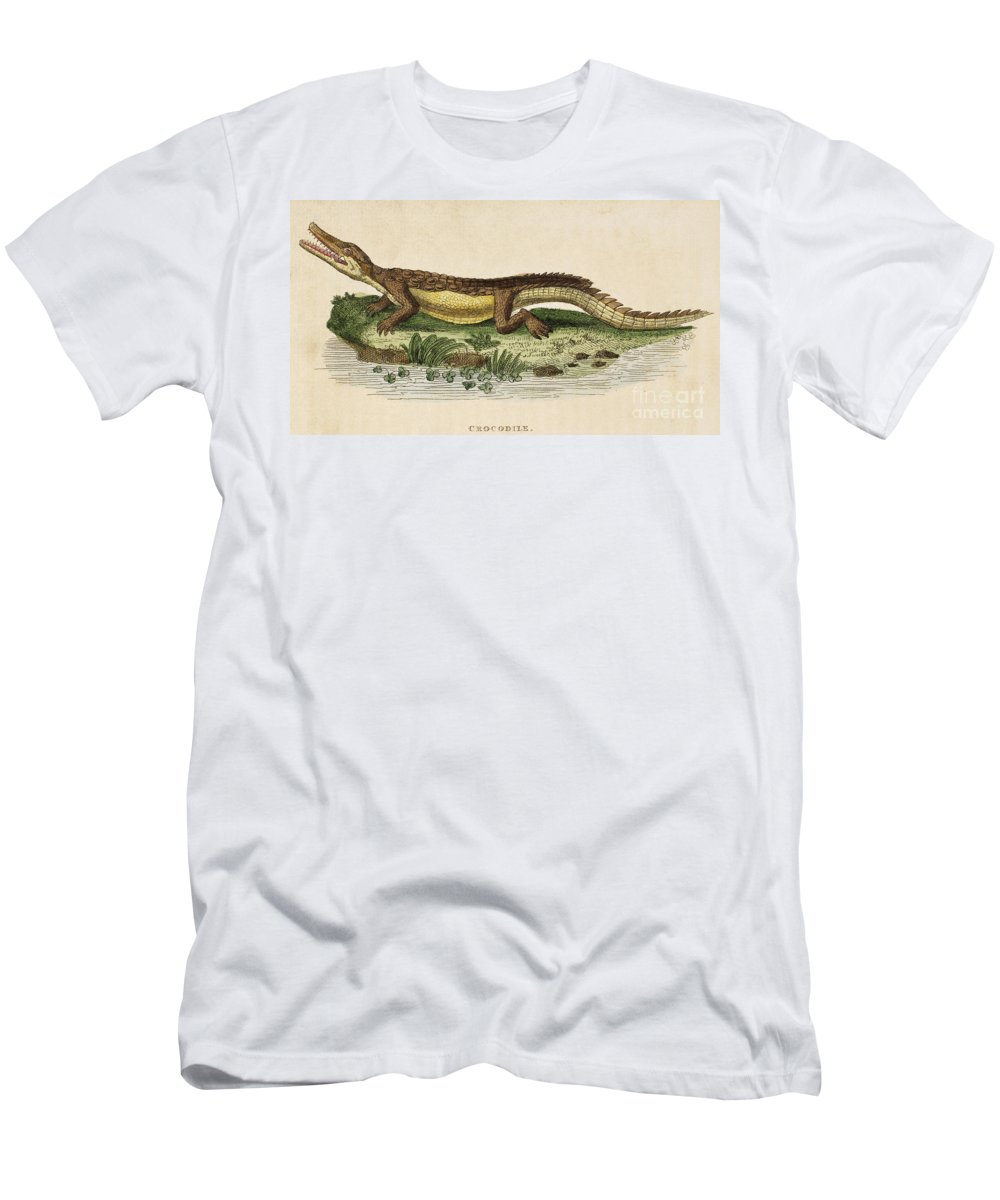 1799 Men's T-Shirt (Athletic Fit) featuring the photograph Crocodile by Granger