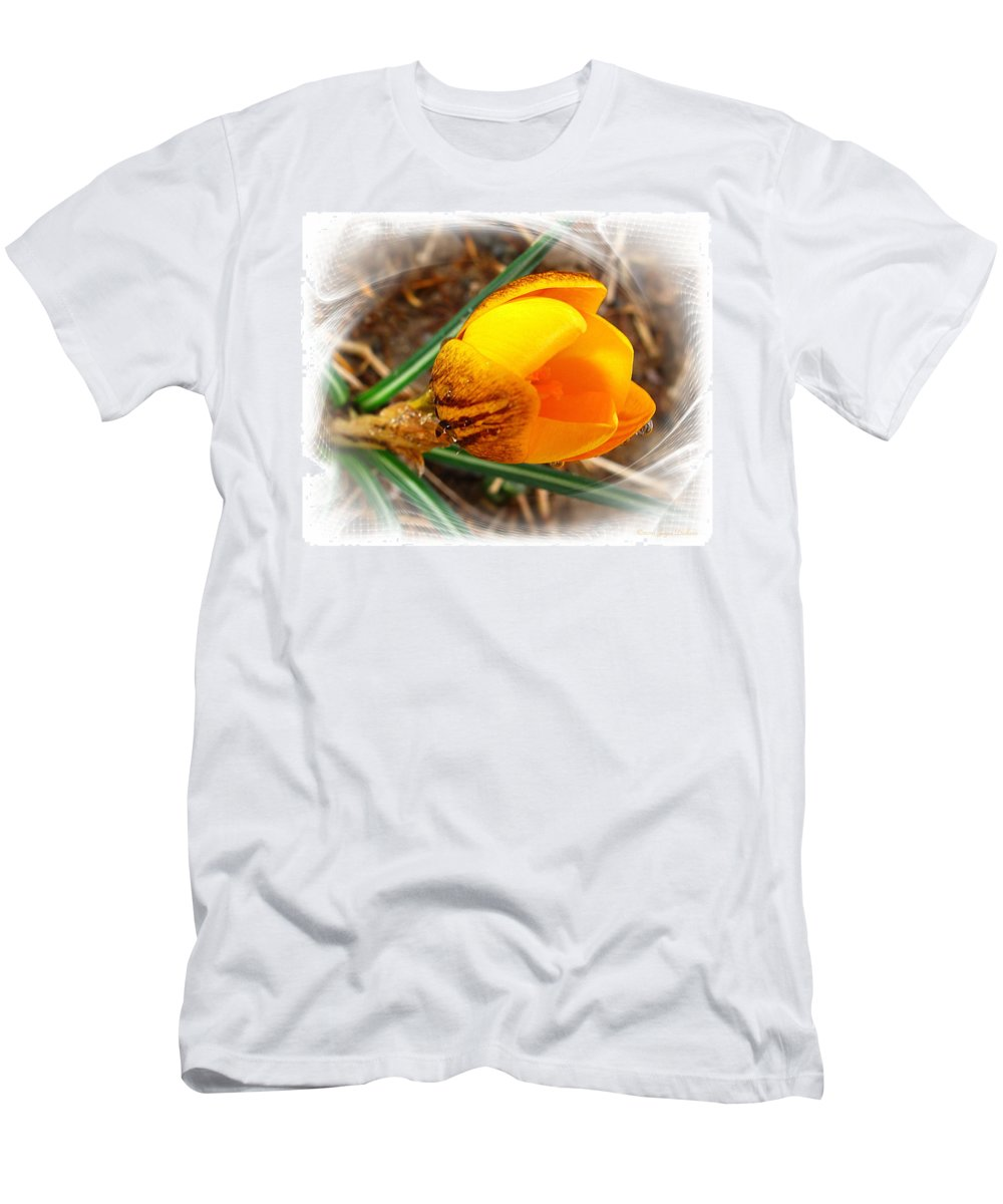 Crocus Men's T-Shirt (Athletic Fit) featuring the photograph Crocus Gold Two by Joyce Dickens