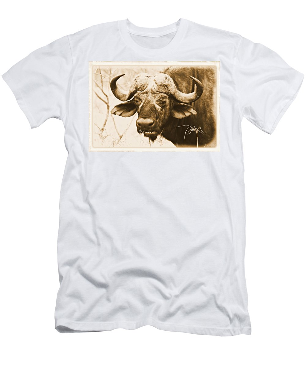 Addo Men's T-Shirt (Athletic Fit) featuring the photograph Dagga Boy by Paul Fell