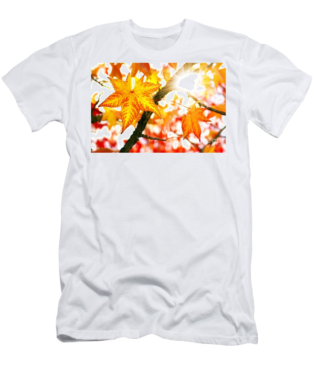 Autumn Men's T-Shirt (Athletic Fit) featuring the photograph Fall Colors by Carlos Caetano