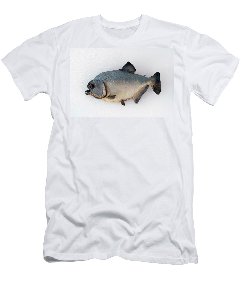 Animals Men's T-Shirt (Athletic Fit) featuring the photograph Fish Mount Set 04 A by Thomas Woolworth