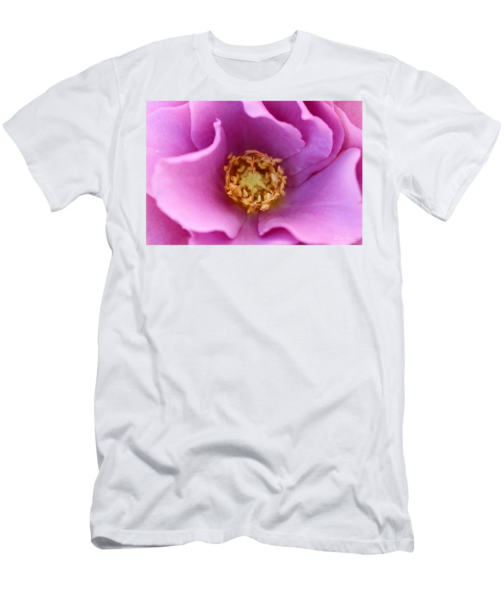 Rose Men's T-Shirt (Athletic Fit) featuring the photograph Flower Power by Diana Haronis