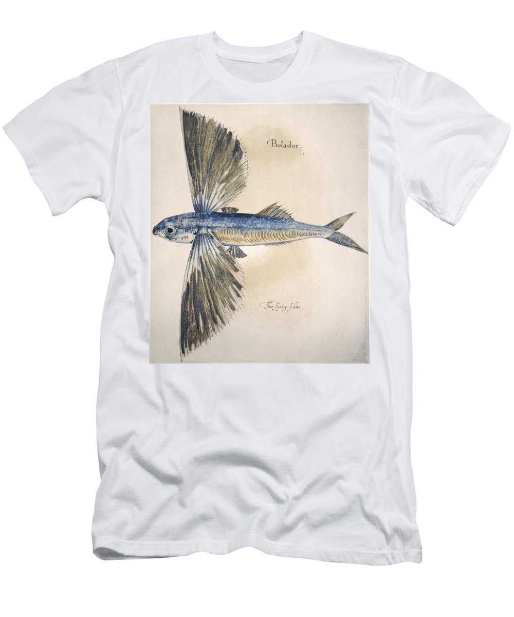 1585 Men's T-Shirt (Athletic Fit) featuring the photograph Flying-fish, 1585 by Granger