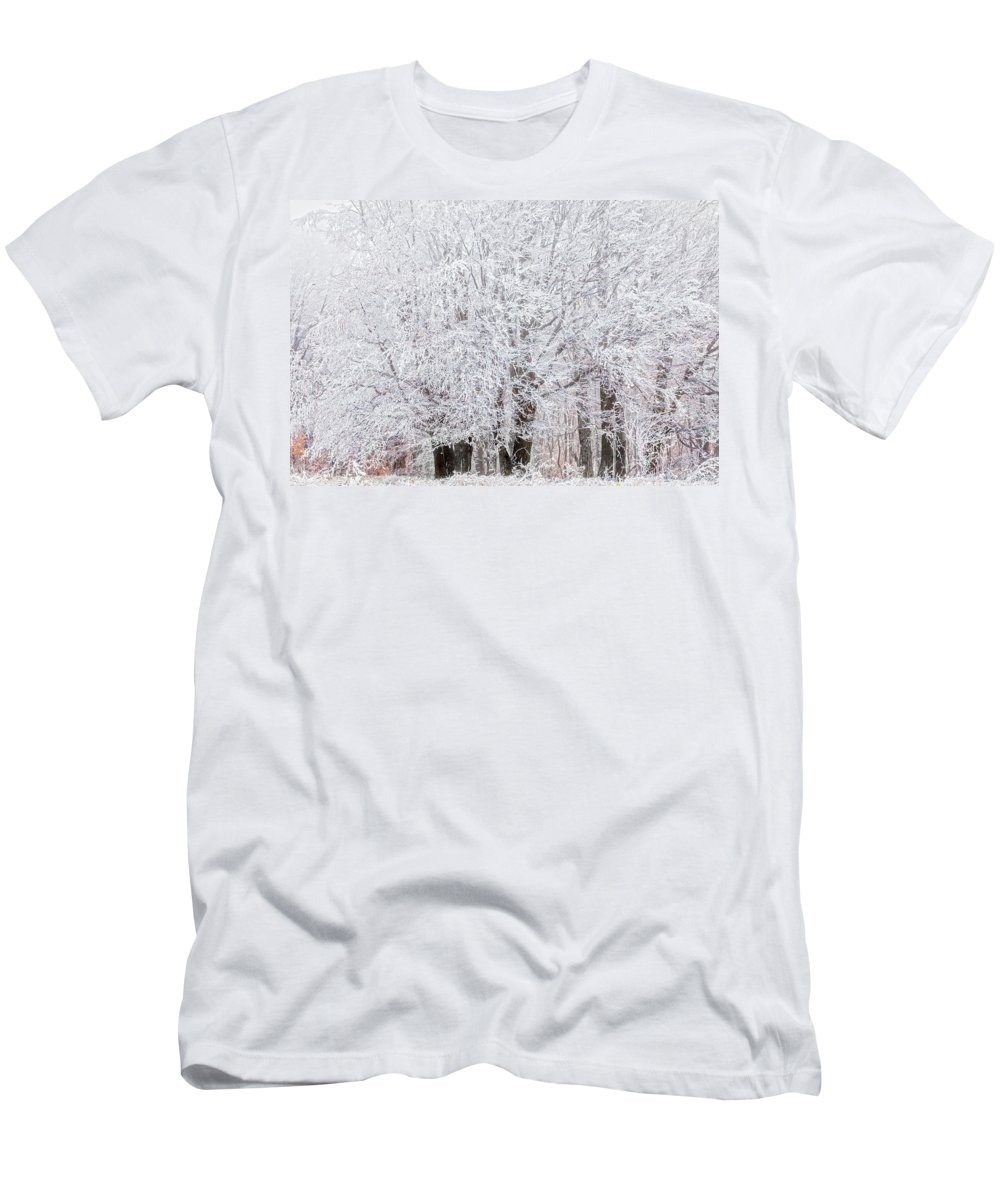 Autumn Men's T-Shirt (Athletic Fit) featuring the photograph Frozen Trees by Evgeni Dinev