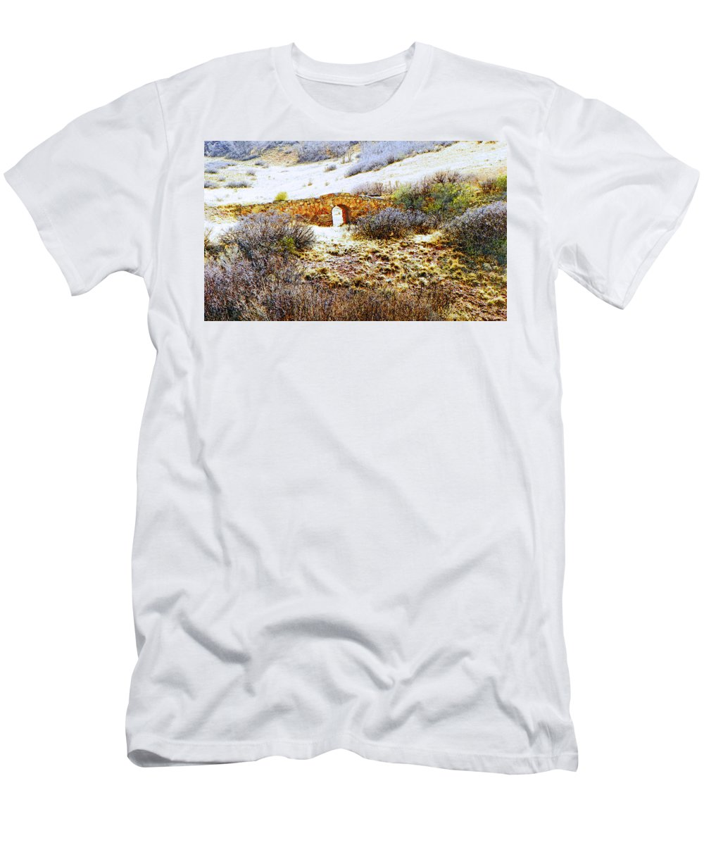 Abstract Men's T-Shirt (Athletic Fit) featuring the photograph Garden Of The Gods - Bridge Panorama by Lenore Senior