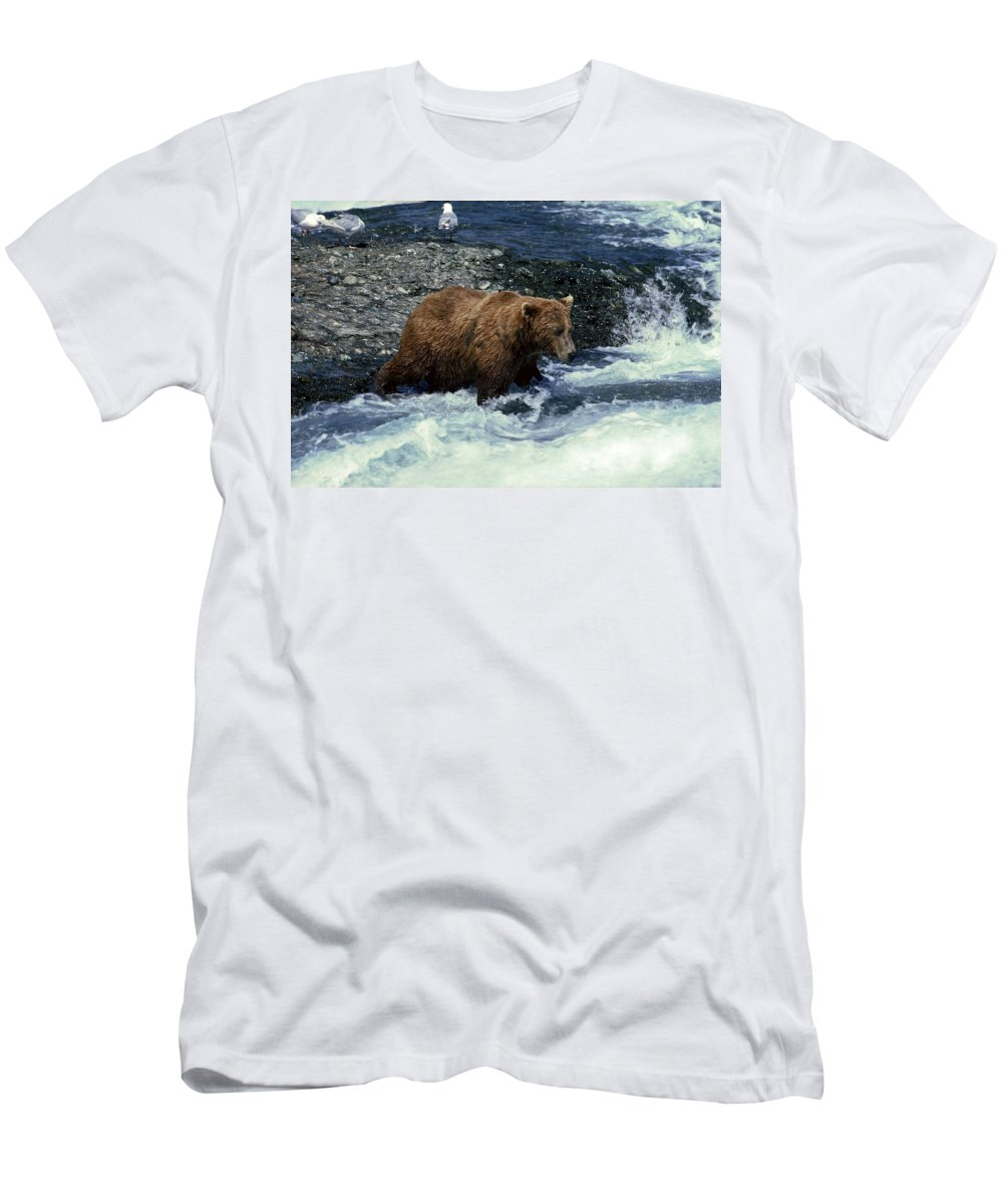 Grizzly Bear Fishing Men's T-Shirt (Athletic Fit) featuring the photograph Grizzly Bear Fishing by Sally Weigand