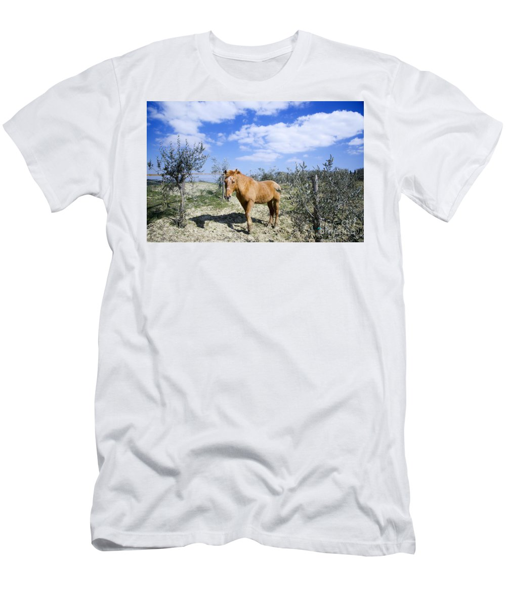 Horse Men's T-Shirt (Athletic Fit) featuring the photograph Horse by Mats Silvan