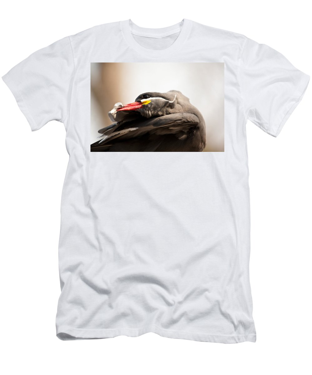 Inca Tern Men's T-Shirt (Athletic Fit) featuring the photograph Inca Tern by Karol Livote