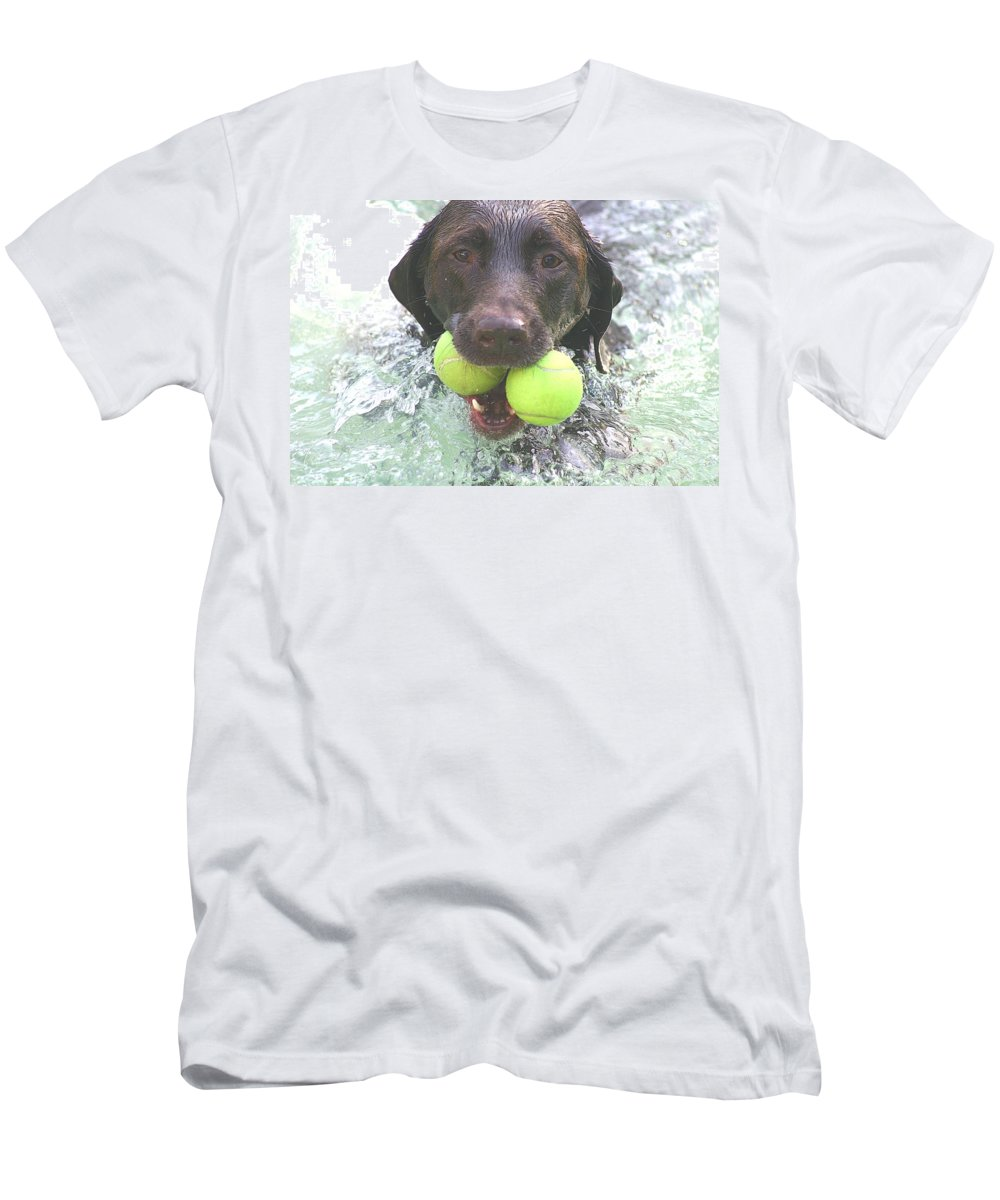 Chocolate Labrador Men's T-Shirt (Athletic Fit) featuring the photograph Leave No Ball Behind by Sheila Wedegis