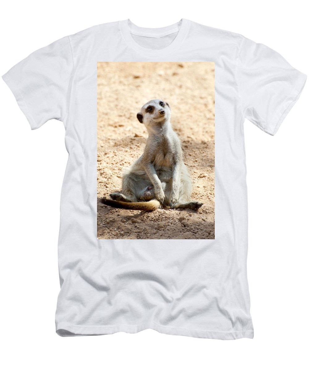 Cute Men's T-Shirt (Athletic Fit) featuring the photograph Meerkat by Fabrizio Troiani
